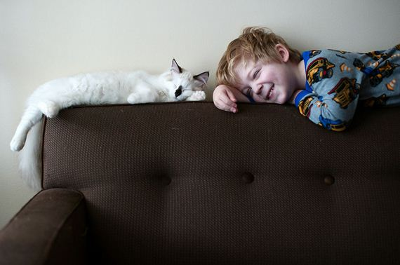 boy-cat-photo