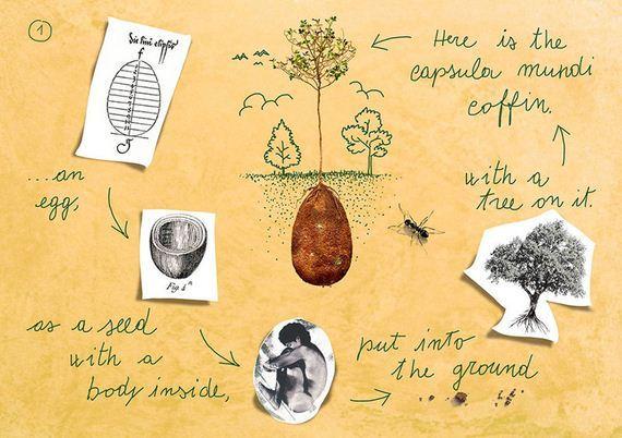 capsule-coffin-tree