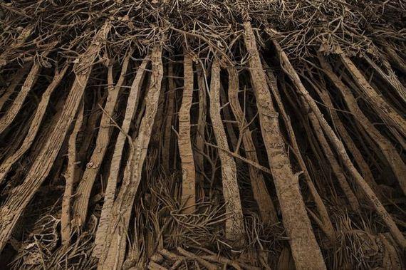 cardboard-forest