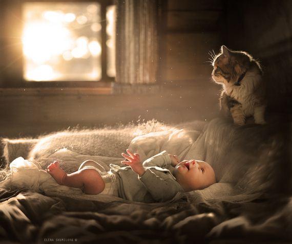 cat-child-friendship