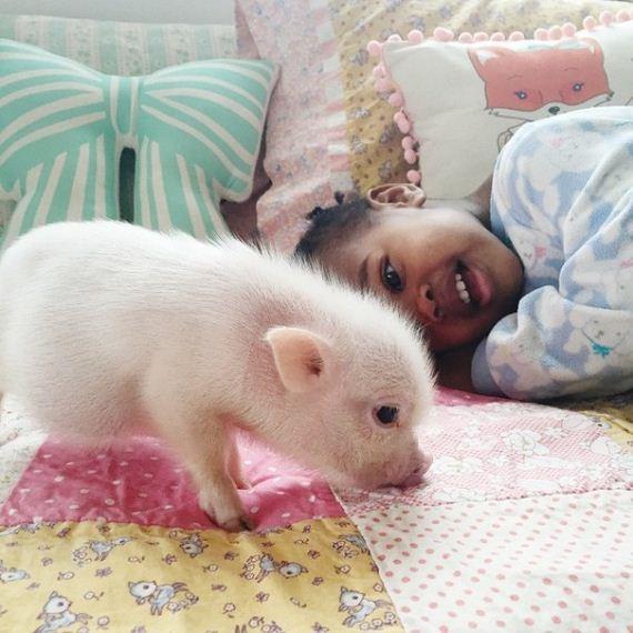 friendship-girl-piglet