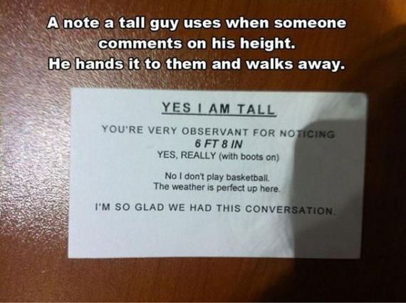 funny-pictures-933