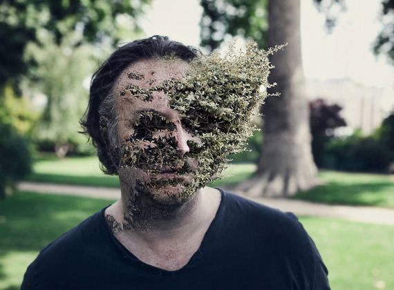 photo-treebeard