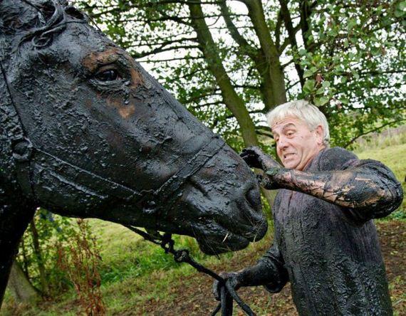 rescue_horse