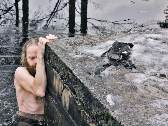 saving_a_duck