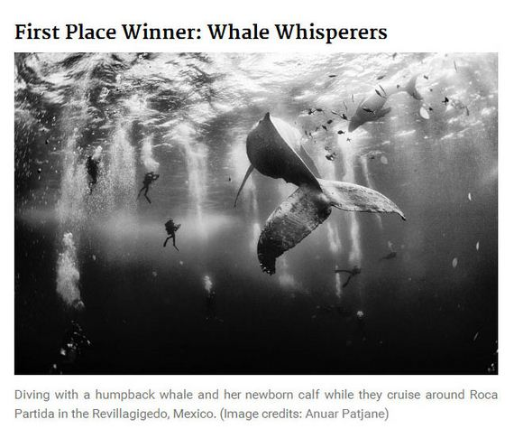 2015_national_geographic