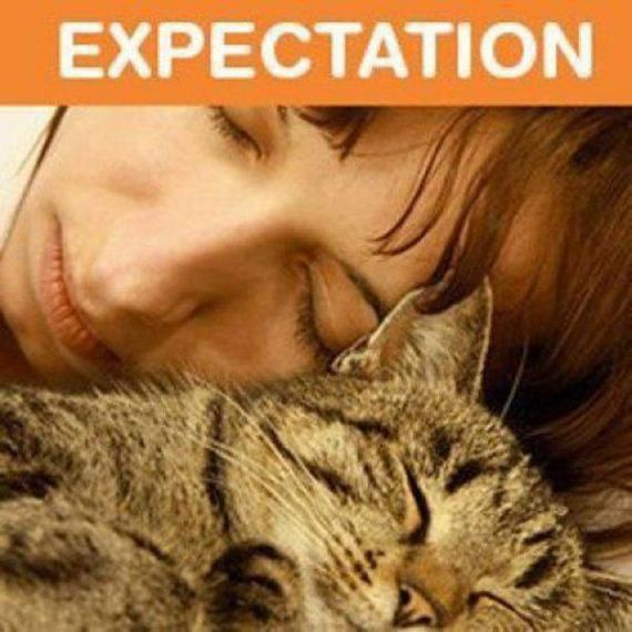 Owning-Cat-Expectations