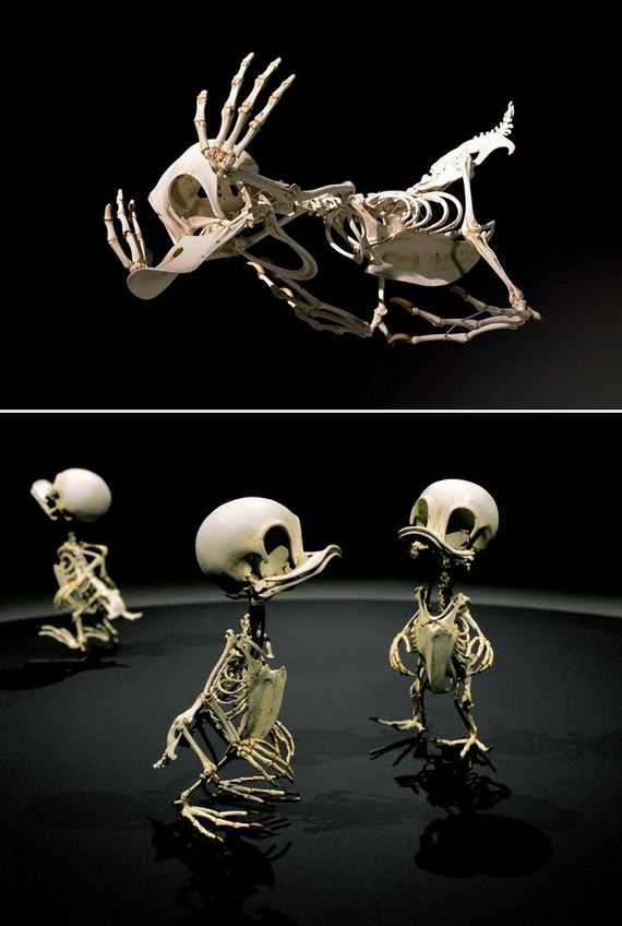 Skeletons-Cartoon-Characters