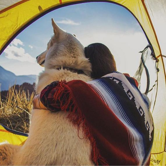 camping_with_dog