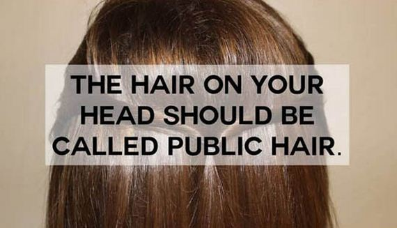 funny-names-everyday-things-hair