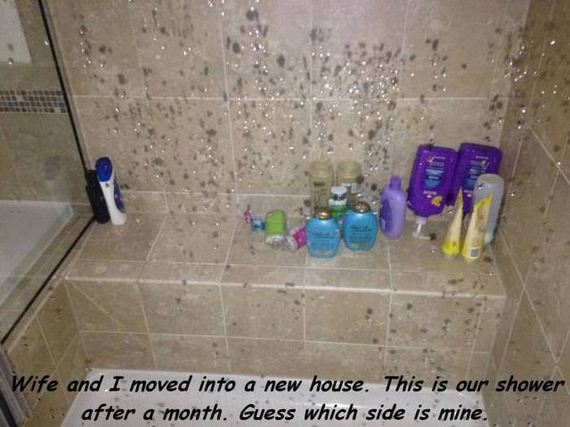 funny-pictures-1029