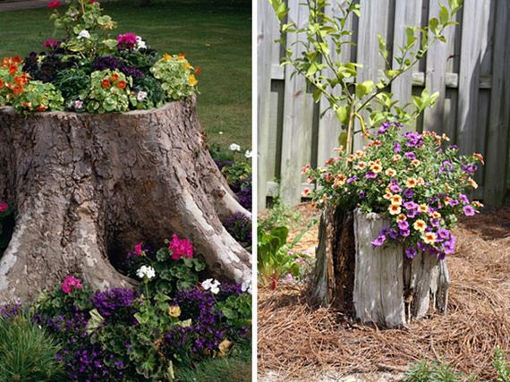 ... Homeowners Around The World Have Turned Tree Stumps And Logs Found In  Their Own Yards Into Beautiful Tree Stump Planters Full Of Blooming Flowers!