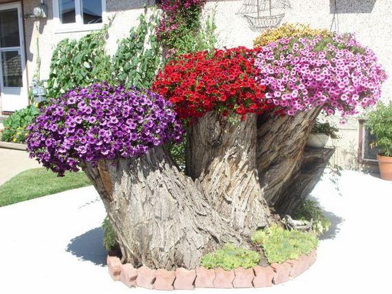 planter-stump