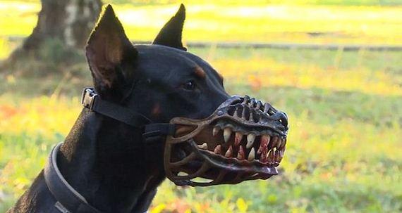 terrifying_muzzle