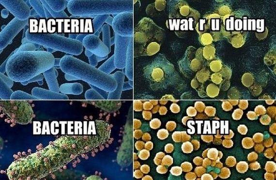 best_science_memes