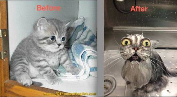 hilarious_before_and_after