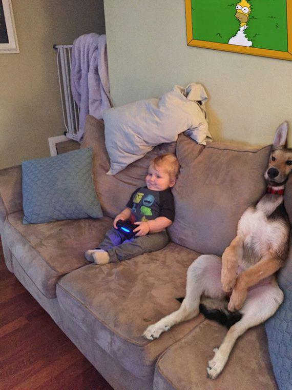 Puppies-happy