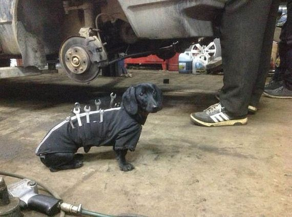 auto_repair_worker