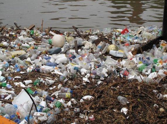 clean_river