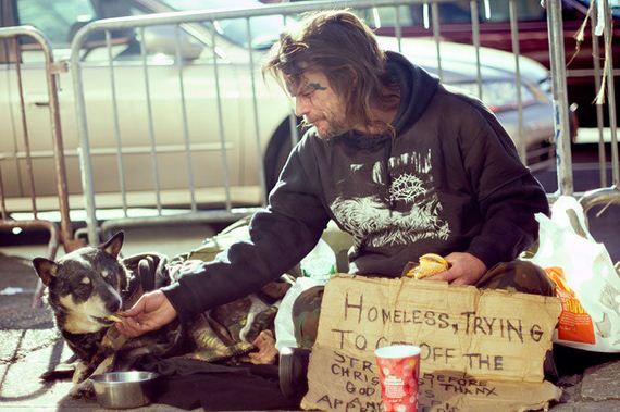homeless_dogs