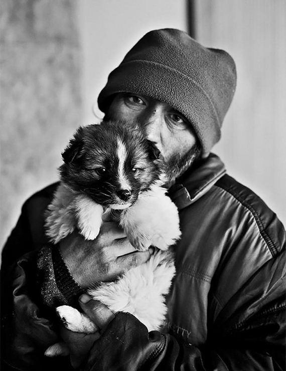 homeless_dogs