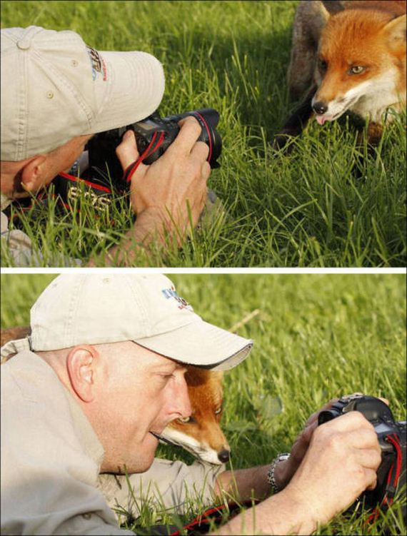 wildlife_photographers