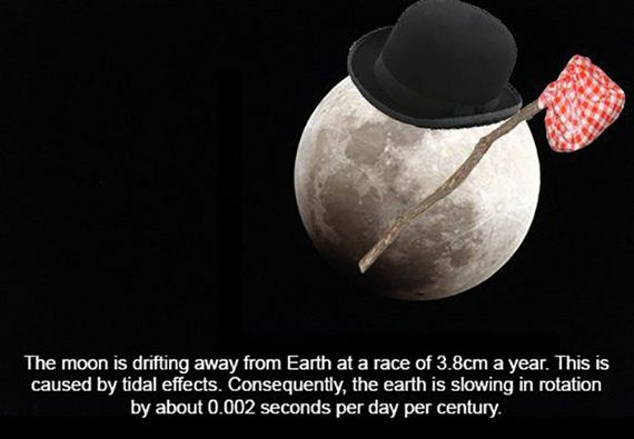 Fun-Facts-About