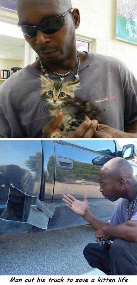 funny-pictures-1158