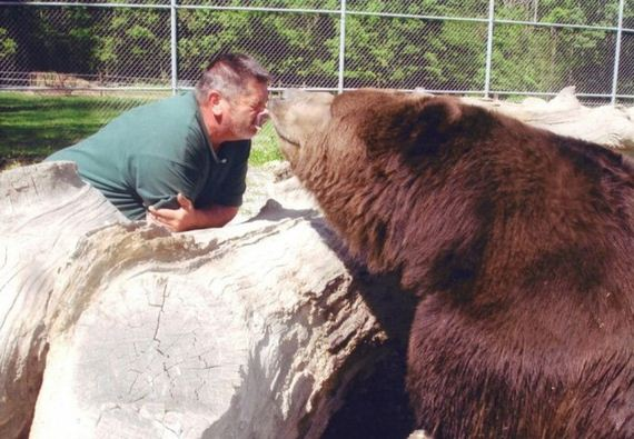 man_and_the_bear