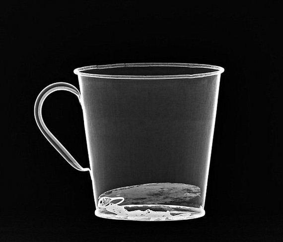 auschwitz_mug