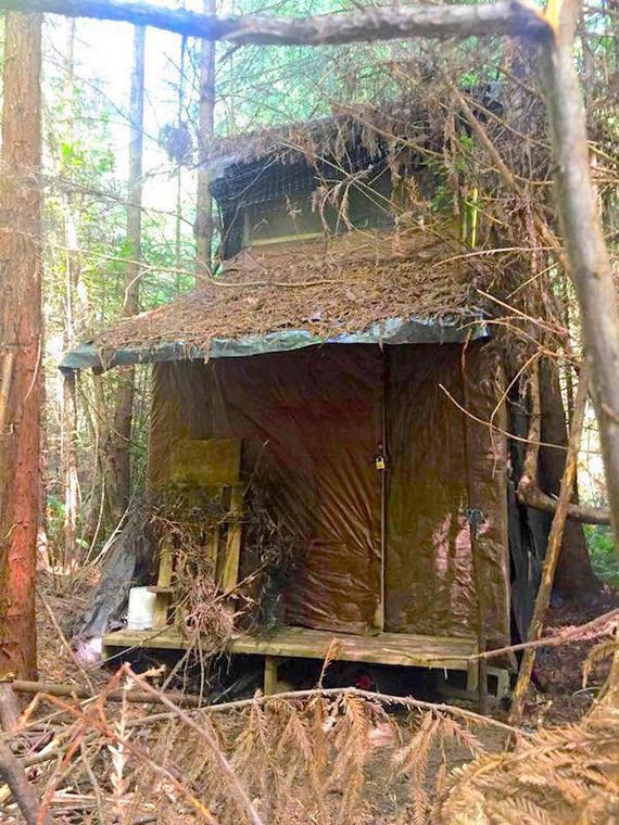 creepy-cabin-in-the-woods