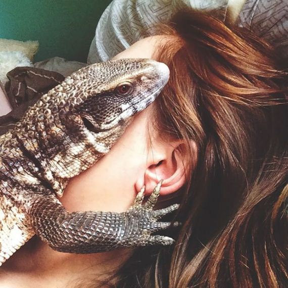 cute_lizard