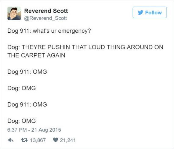 dog_911