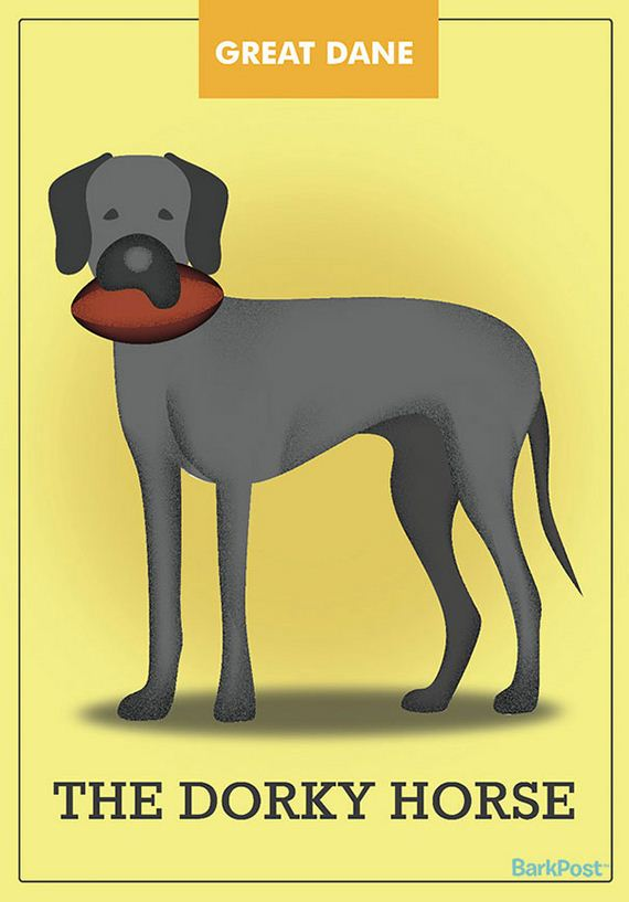 dog_breed_illustrations