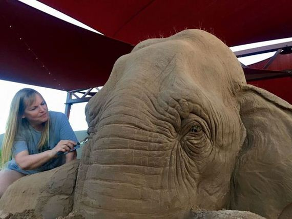 elephant-6-3