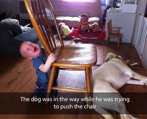 funny-pictures-1244