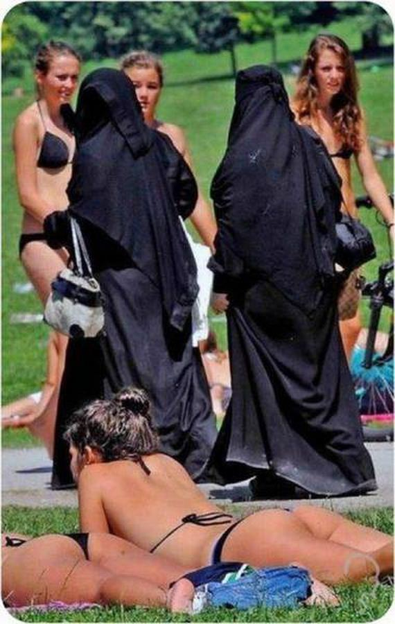 funny-pictures-1248