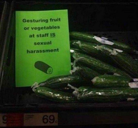funny-pictures-1256