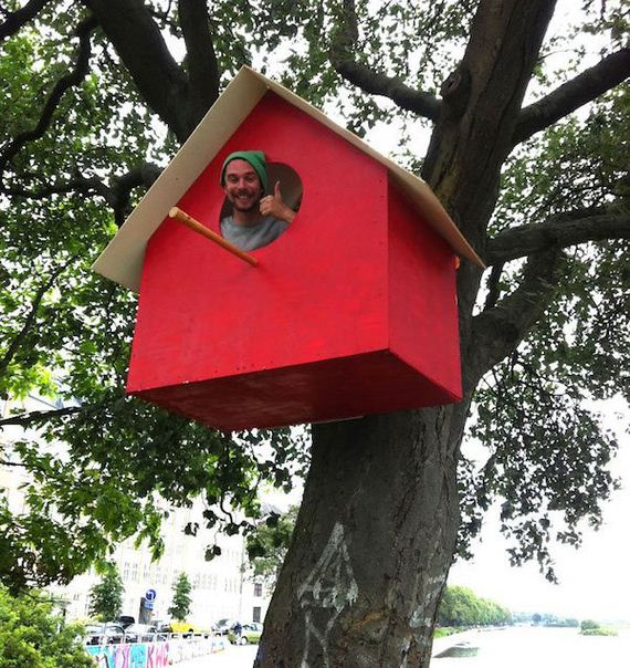 guy-builds-3500-birdhouses