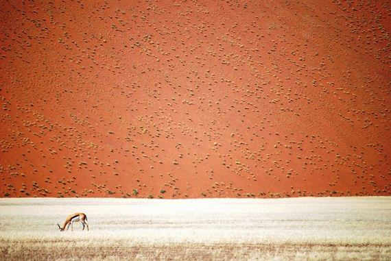 national_geographic_travel_photographer