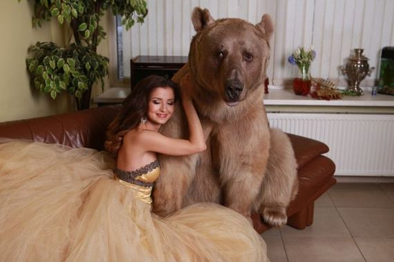 photo_bear-4-21