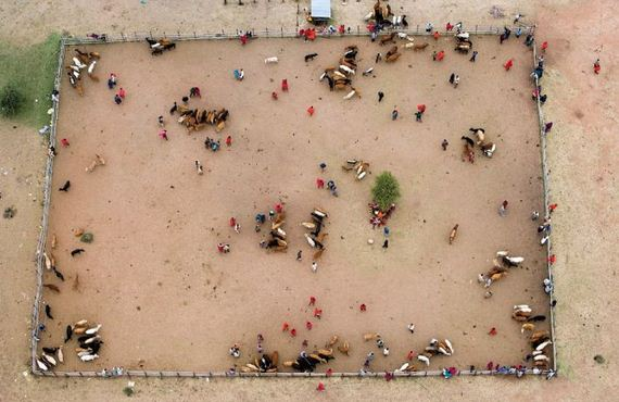 beautiful_aerial_photographs