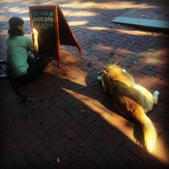clever_sidewalk_chalk_sings