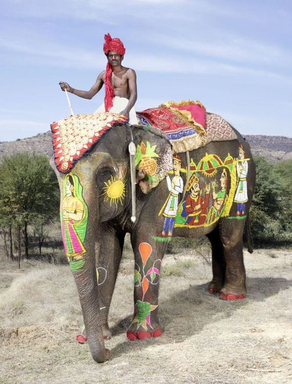 elephant_body_art