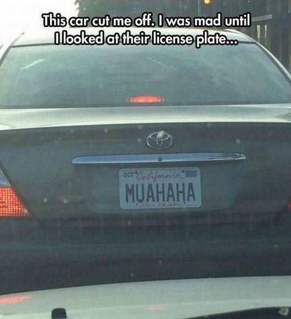 funny-pictures-1294