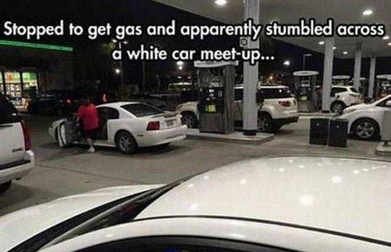 funny-pictures-1298
