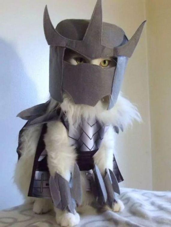 halloween_cat_costumes