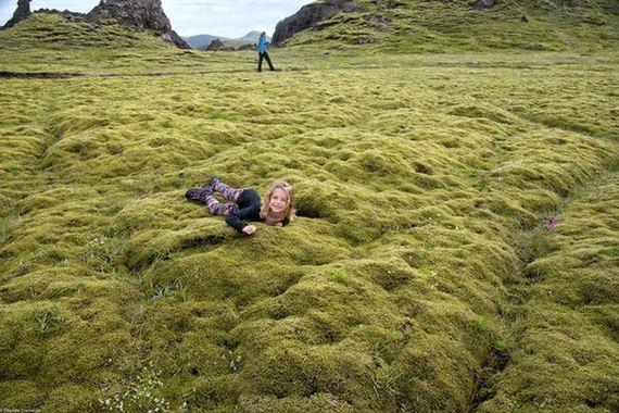 moss_in_iceland