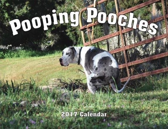 pooping-pooches1