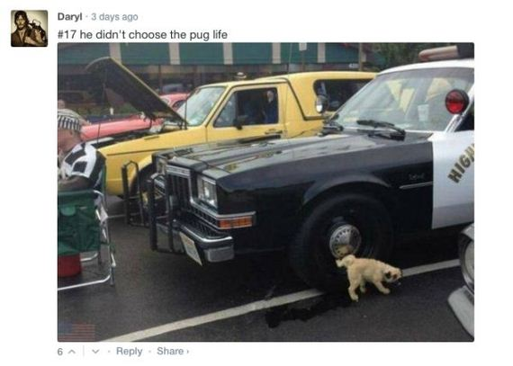 top-comments-of-the-week-8-22